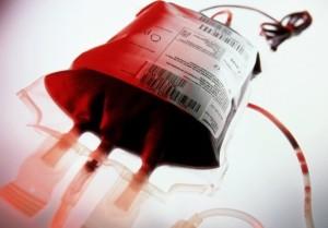 sangue infetto